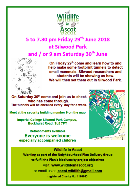 Wildlife in Ascot - 29 June poster